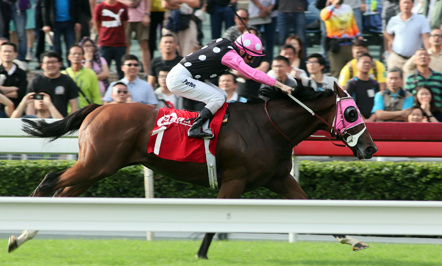 Photo Release – BOCHK Wealth Management Jockey Club Mile
