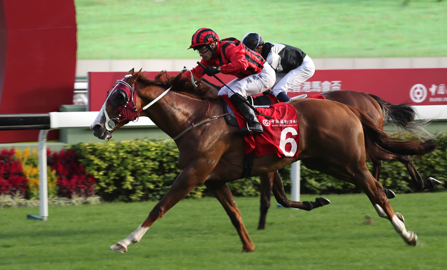 Photo Release – The BOCHK Jockey Club Cup