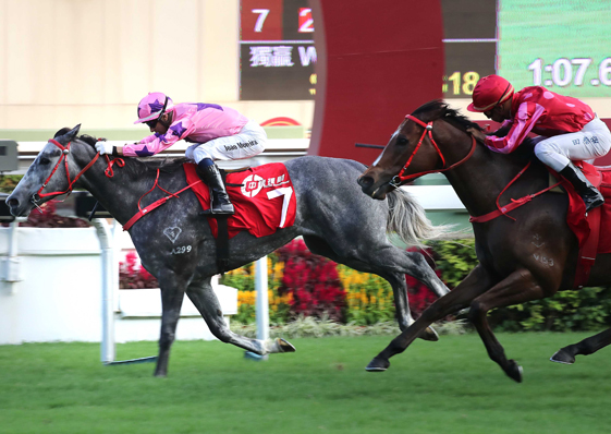 Prawn proves the King for returning Moreira
