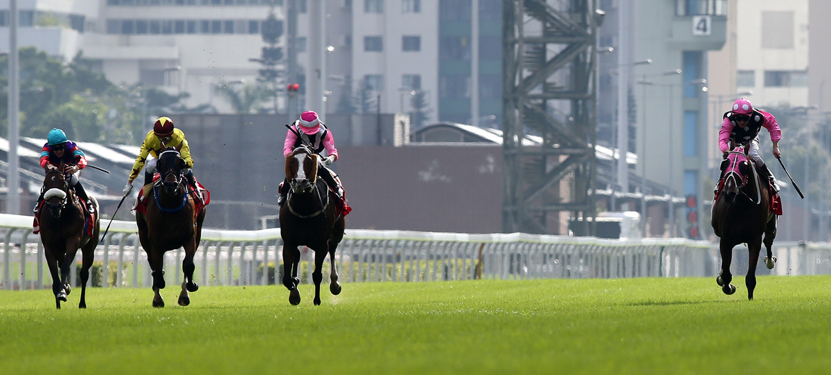 Beauty Generation (right) makes it four wins in a row en route to defending his title in the G1 LONGINES Hong Kong Mile on 9 December.