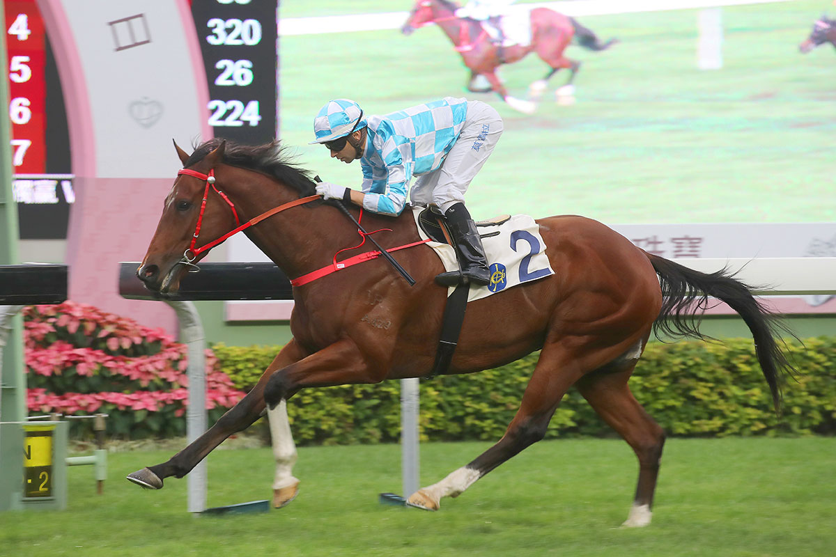 Conte records his sixth win from eight starts in impressive style under Joao Moreira.