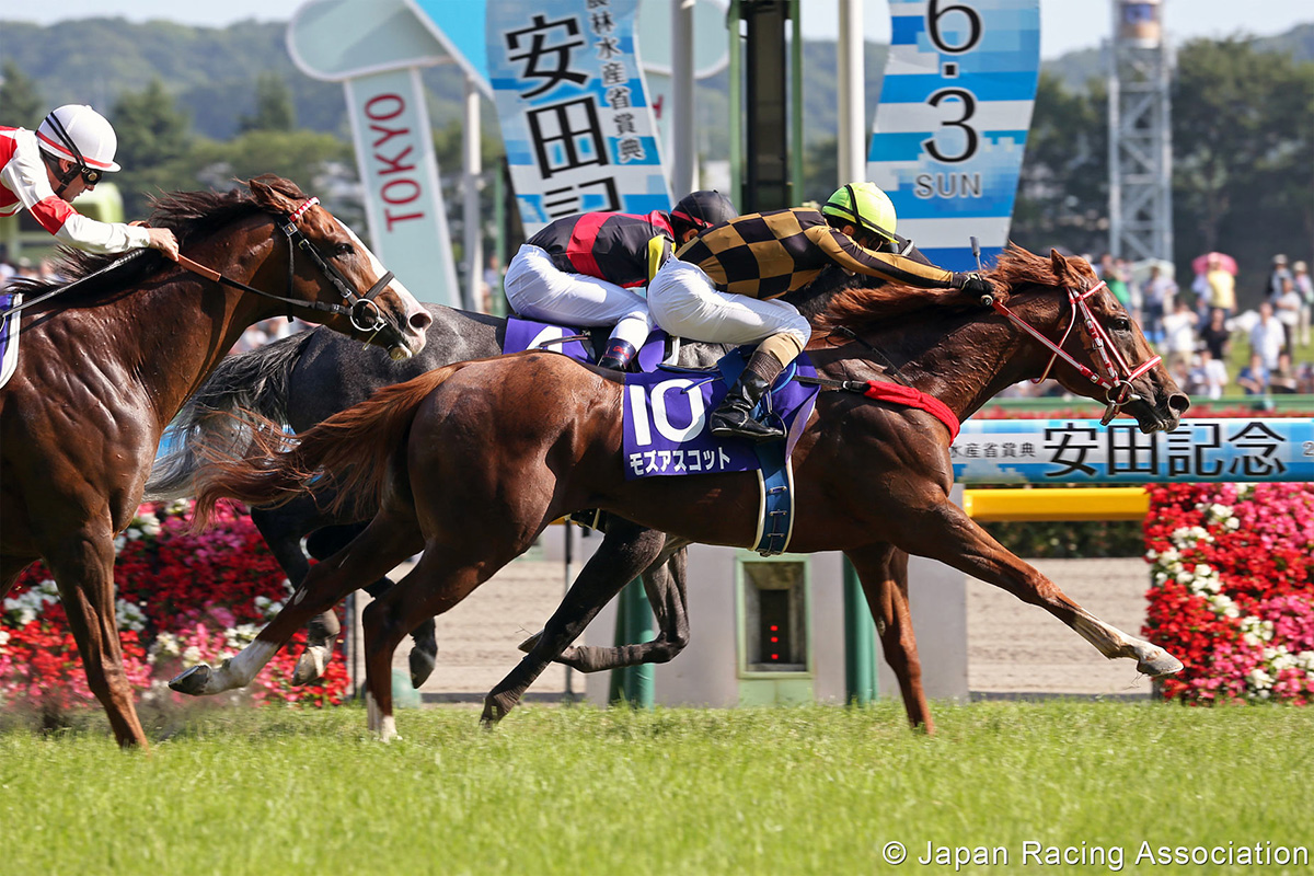 Mozu Ascot lands the G1 Yasuda Kinen earlier this year.