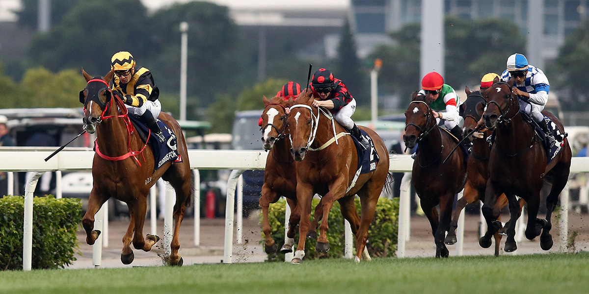 Glorious Forever (left) completes a clean sweep of all four G1s for Hong Kong with a win in the LONGINES Hong Kong Cup.