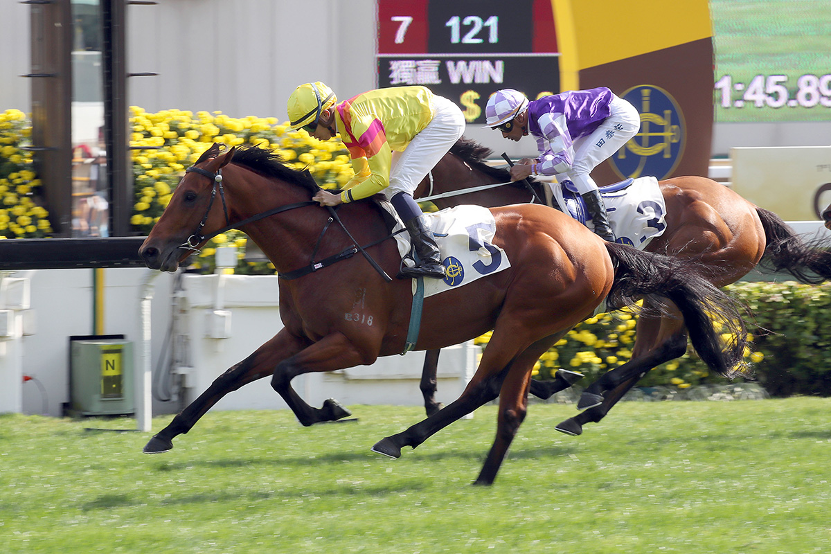 Ho Ho Khan is firmly in the BMW Hong Kong Derby picture.