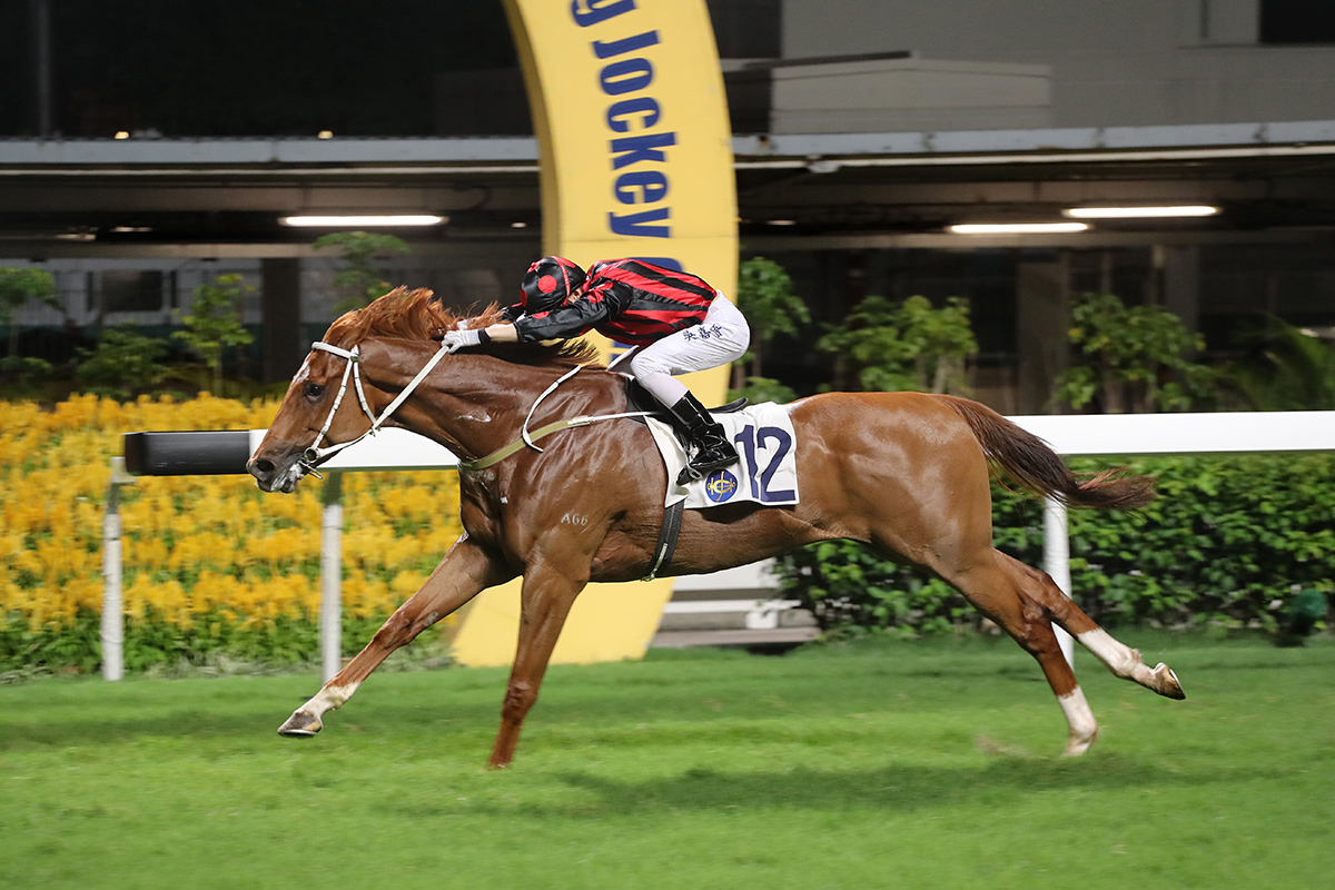 Time Warp's first Hong Kong win was at Happy Valley in June 2017.