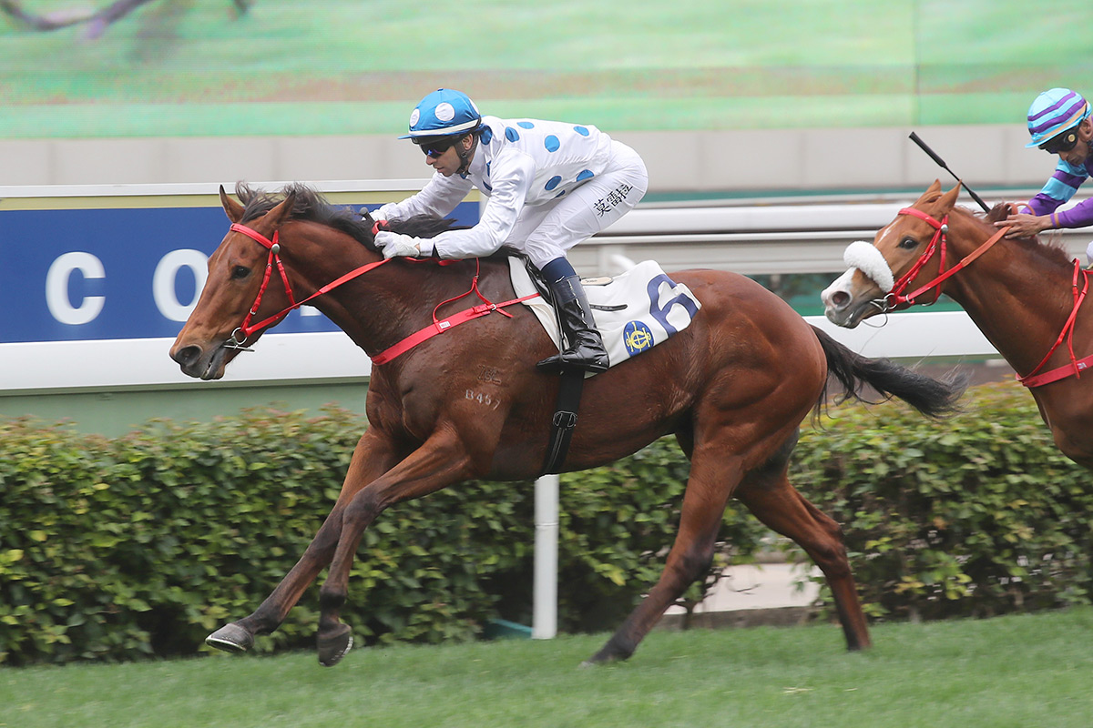 The Derby-bound Enrichment (front) opens his Hong Kong account under Joao Moreira.