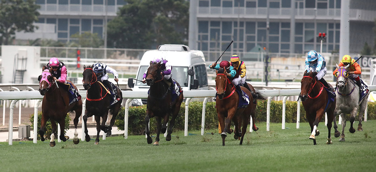Beauty Generation brushes off Beat The Clock to win a second Queen's Silver Jubilee Cup.