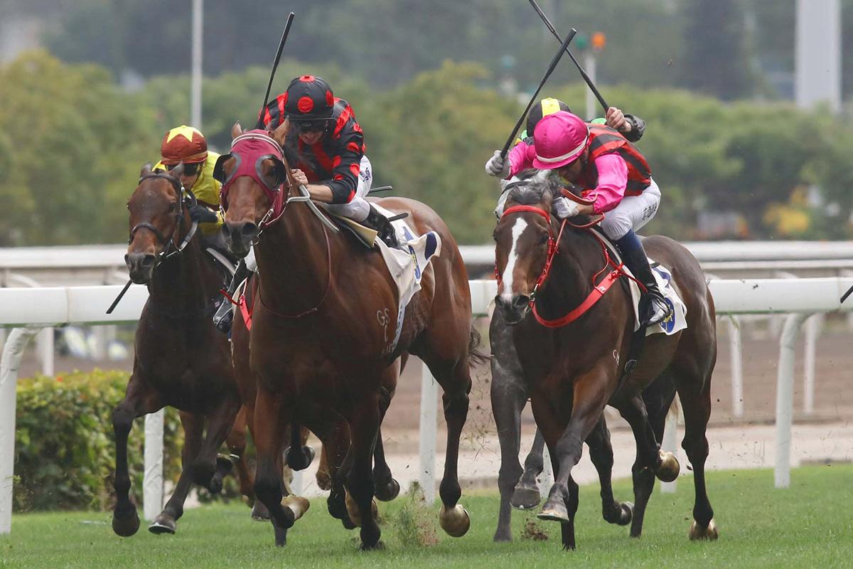 Derby hopeful Waikuku (pink cap) outpoints the imposing Good Standing.