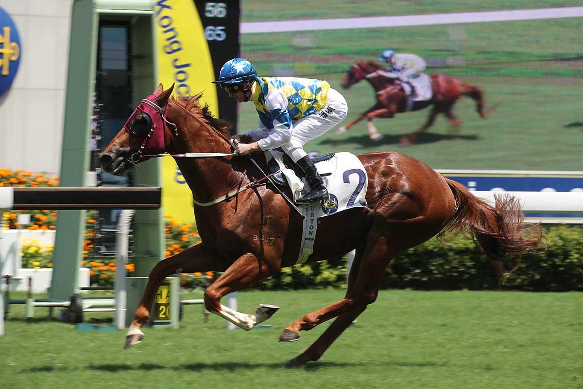 Solar Patch bids to stake a Derby claim.