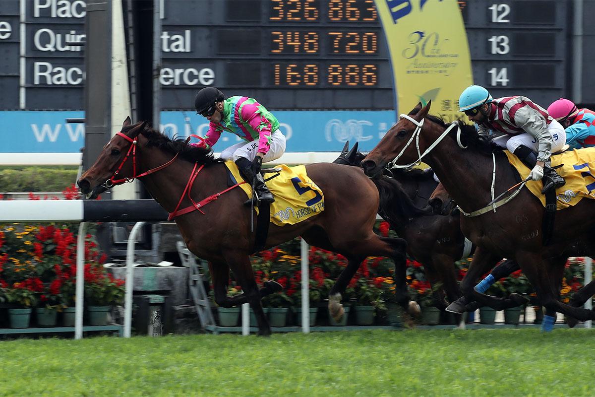 Macau Horse Racing
