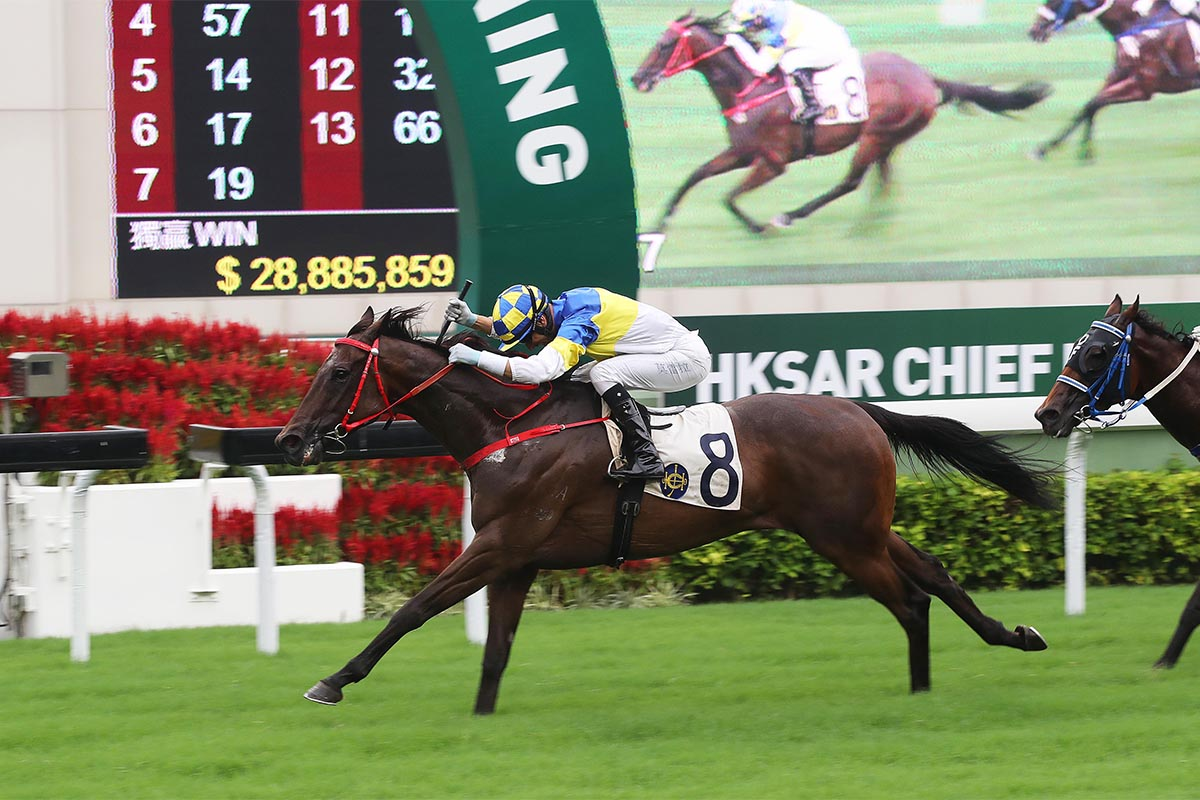 Yourthewonforme was Frankie Lor's first runner and first winner on 3 September, 2017.