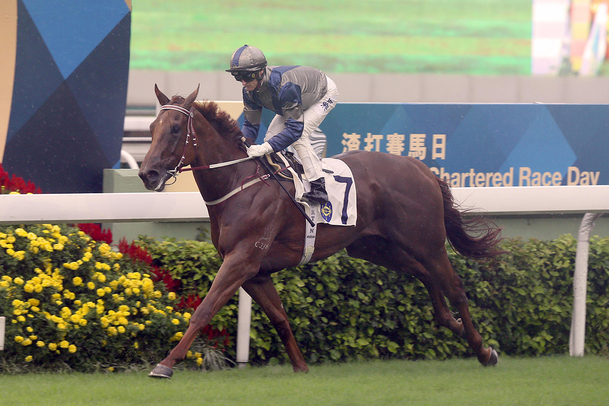 Aethero eases to a dominant success under Zac Purton.