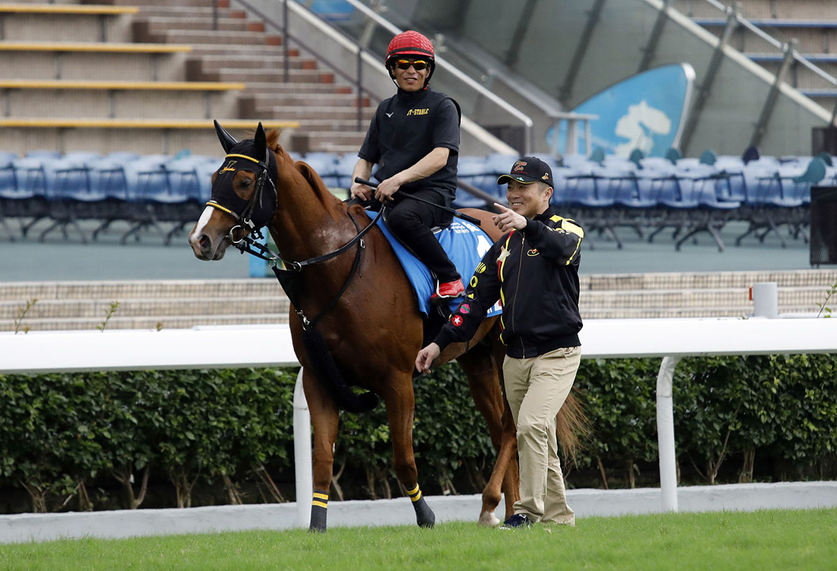 Happy Grin returns from his work on the turf at Sha Tin with trainer Junji Tanaka.