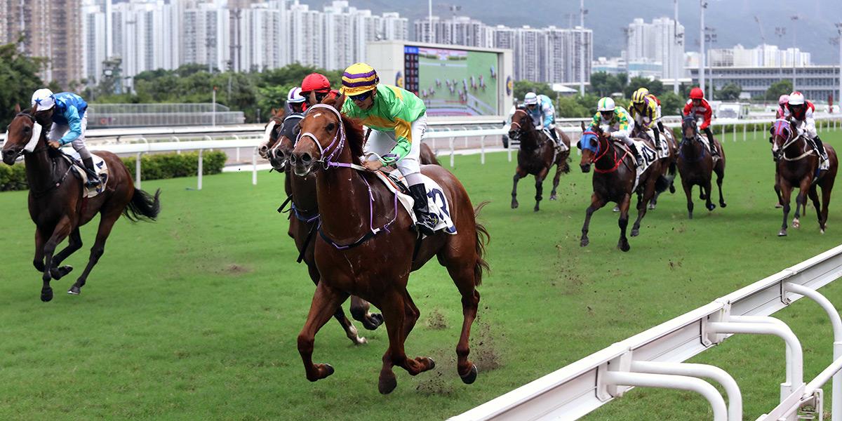 Classic Unicorn wins the Members Cup under Derek Leung.