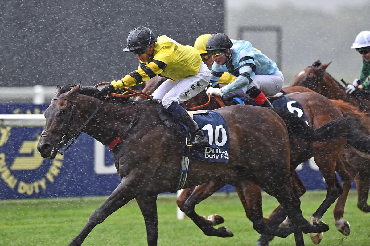 shergar cup top jockey bettingadvice