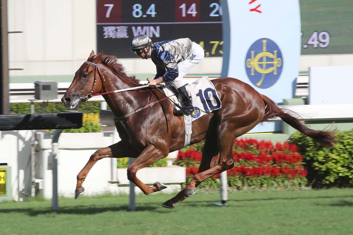 Purton has been aboard for three of Aethero's five wins.