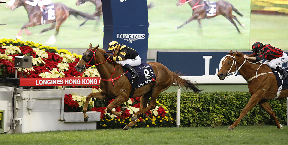 De Sousa is all focus as Glorious Forever wins the Hong Kong Cup.