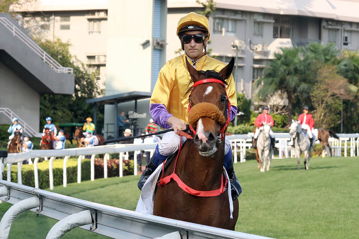 Blake Shinn is about to be headed late in the BMW Hong Kong Derby.