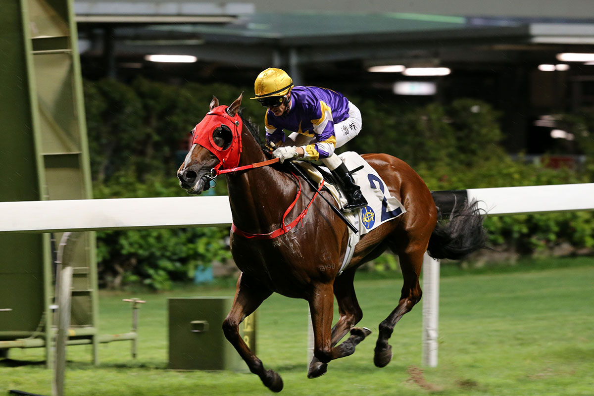 Golden Dash gives Purton his second win on the night.