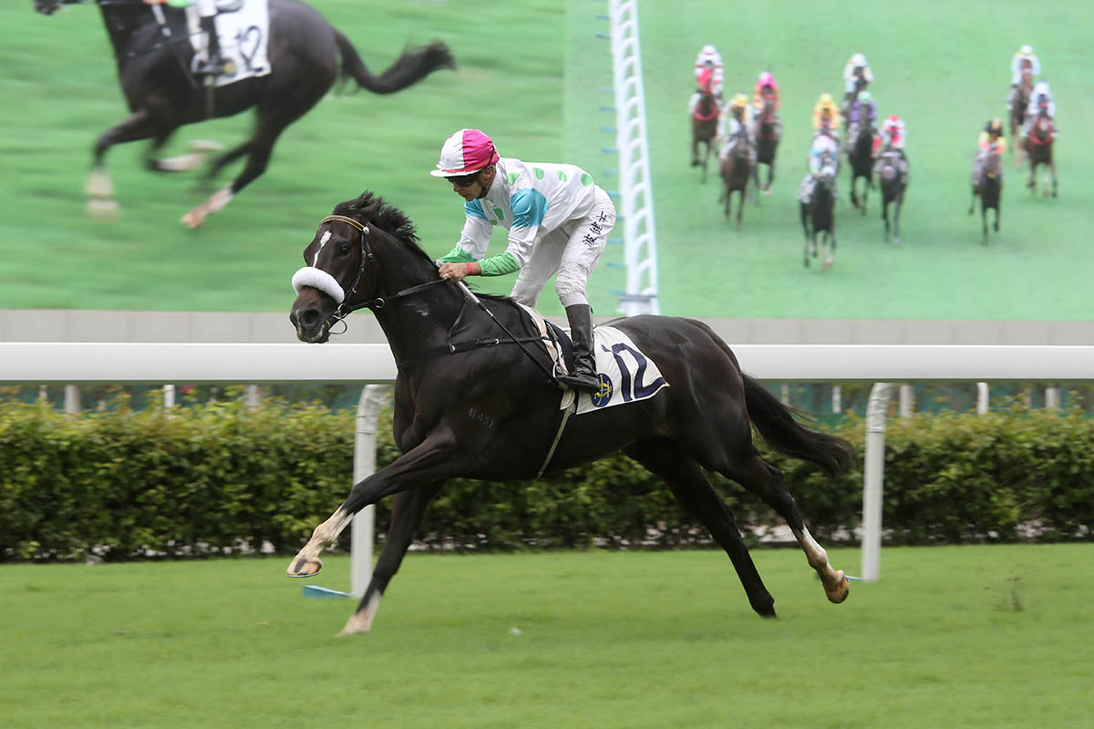 Vagner Borges steers Gallant Legacy to a cosy win.