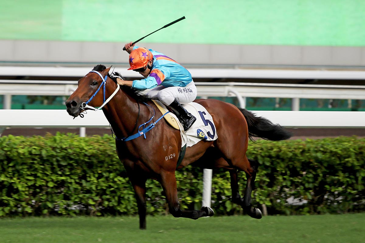 Dances With Dragon gives Keith Yeung a great day in the saddle.