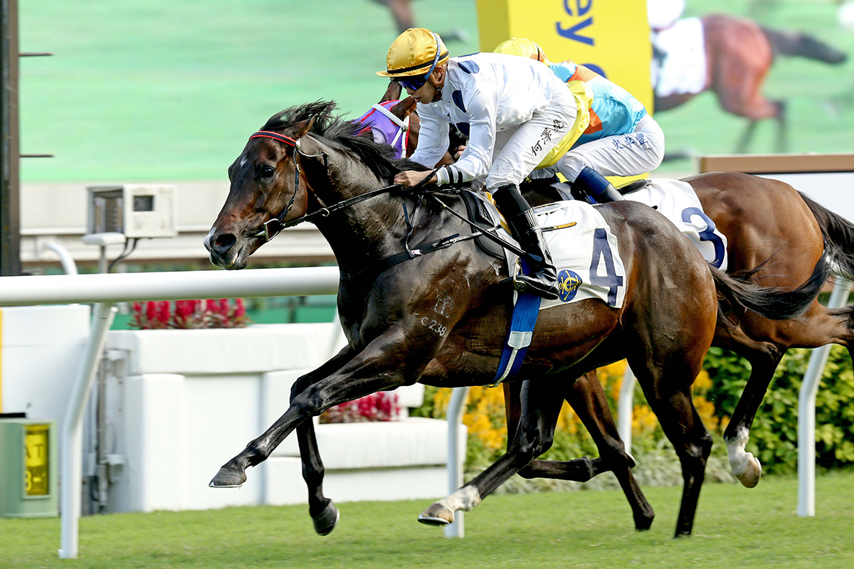 Golden Sixty will aim to win a first G1 in the LONGINES Hong Kong Mile.