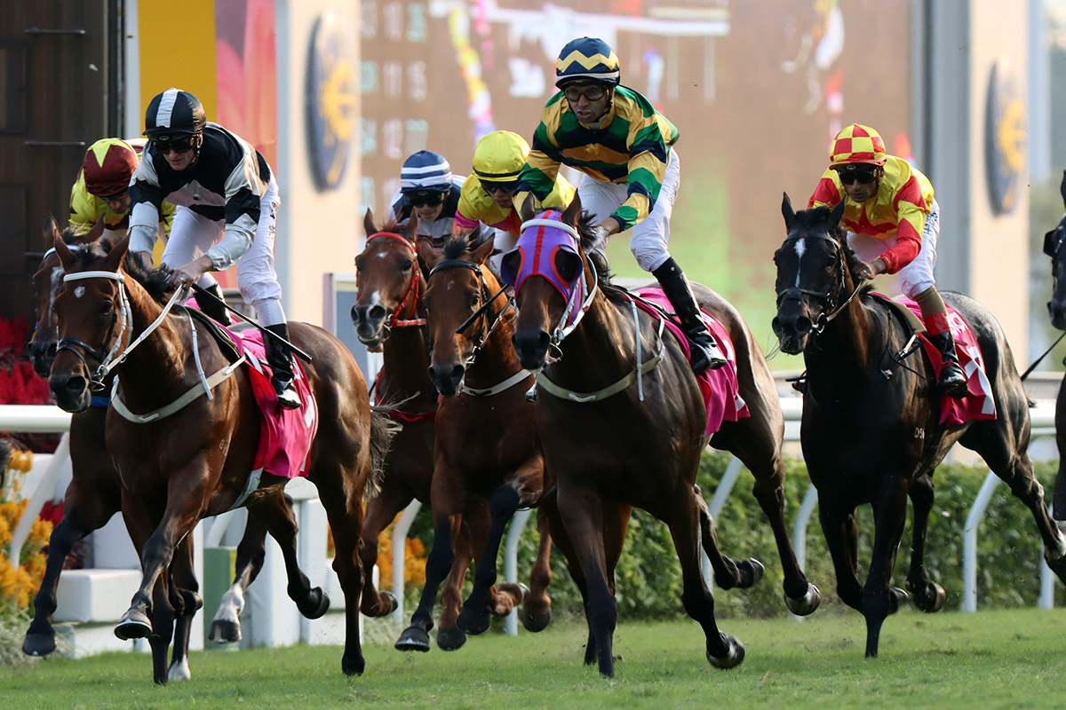 Furore (right) and Exultant (left) cross the line.