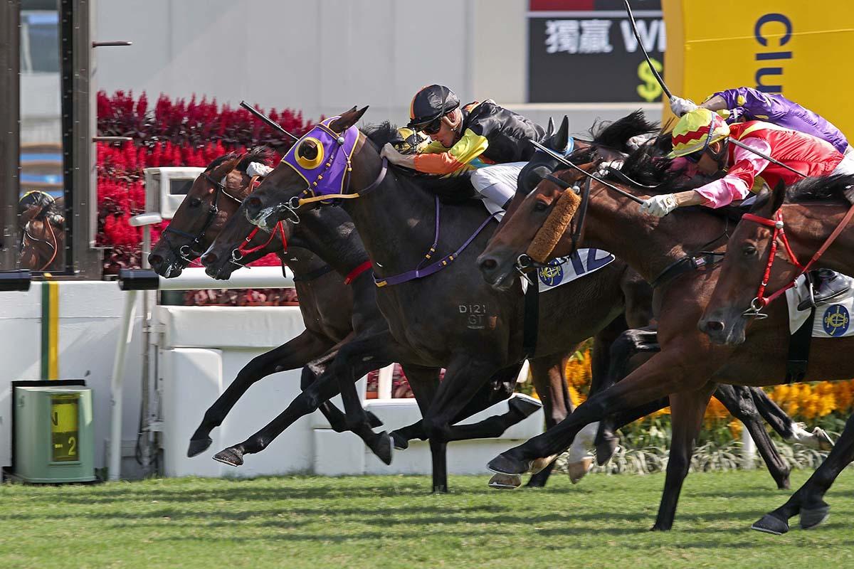 Speed Fay Fay (purple headgear) scores in a tight finish.