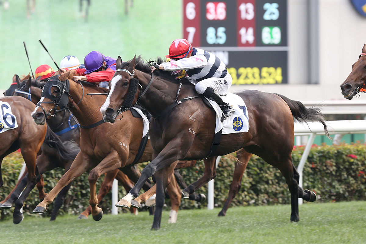 Master Montaro is now a two-time winner from four starts.