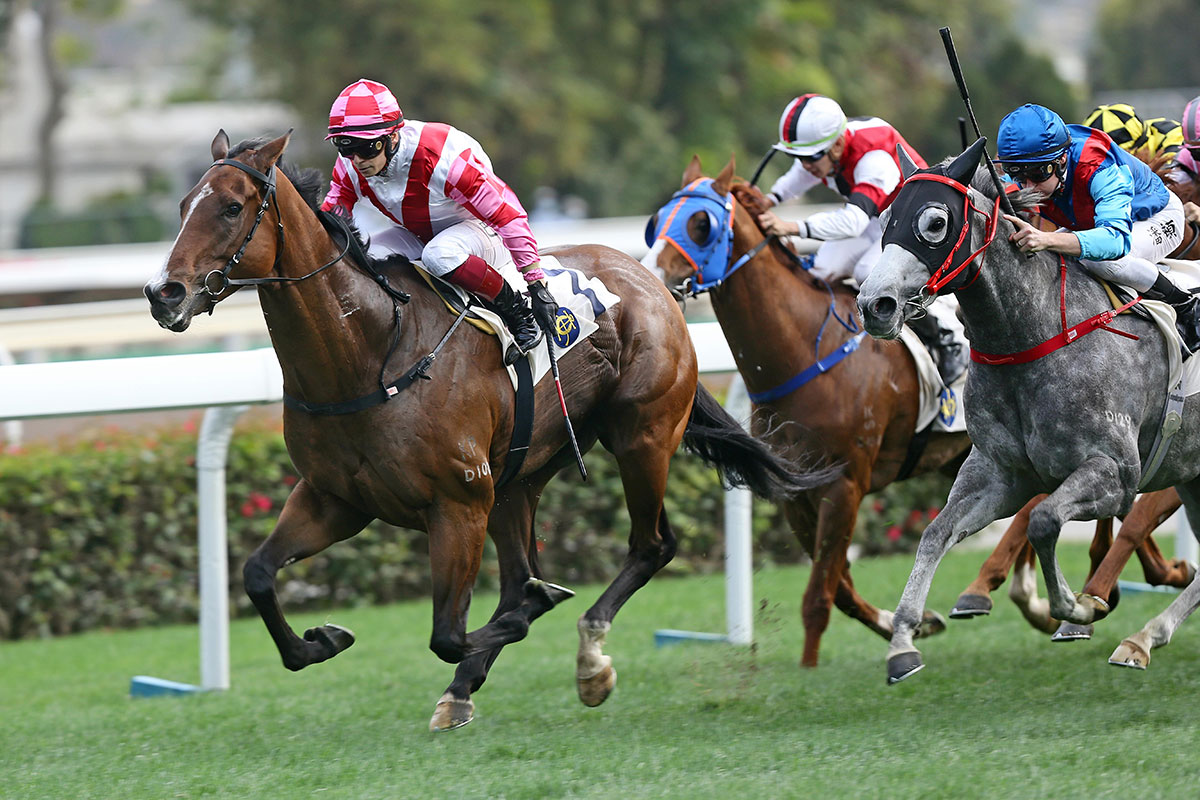 Super Wealthy (left) is a three-time winner from eight starts in Hong Kong.