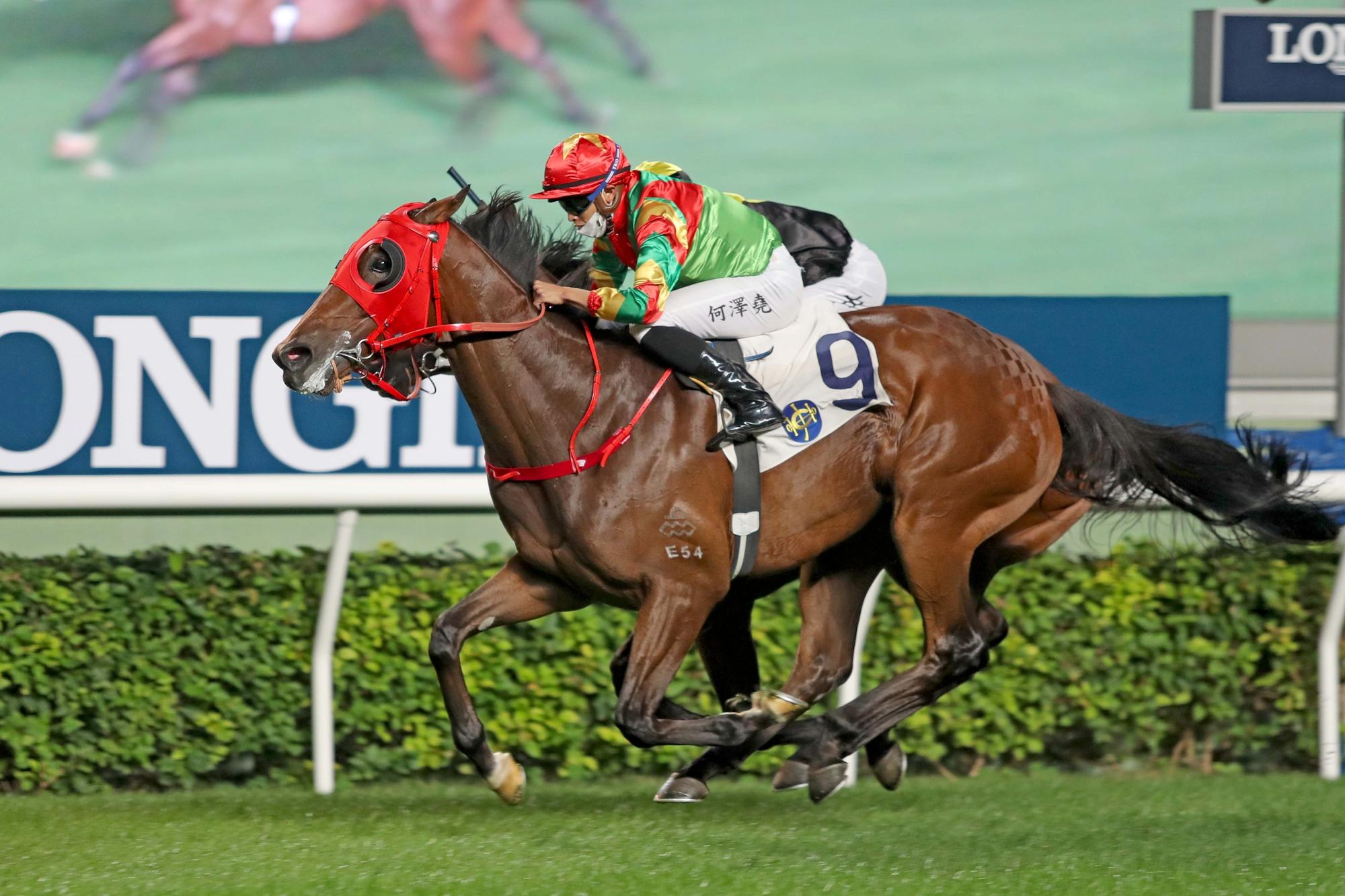 Tourbillon Diamond is a one-time winner in Hong Kong.