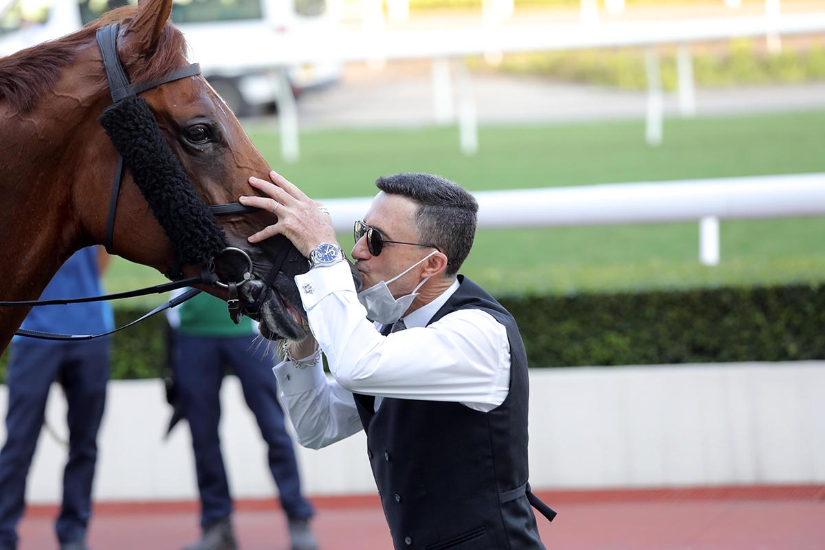 Super Ten gets some love from trainer Douglas Whyte.